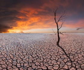 Desolate deserted land Stock Photo