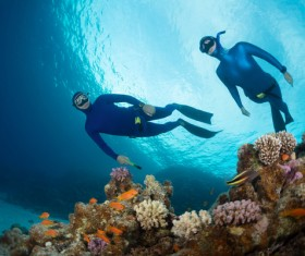 Diver with beautiful underwater world Stock Photo 02