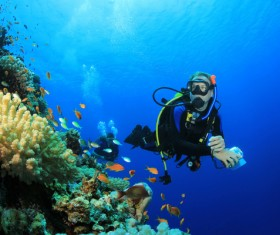 Diver with beautiful underwater world Stock Photo 03