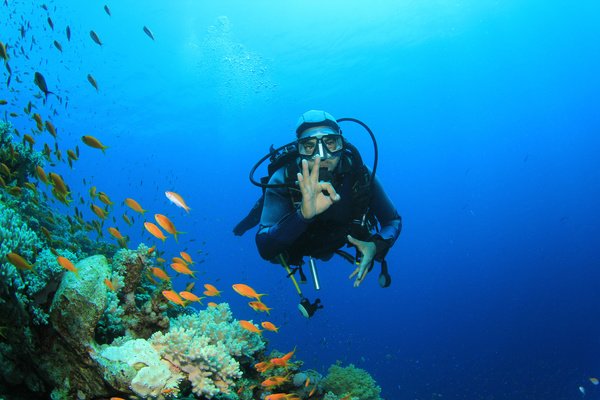 Diver with beautiful underwater world Stock Photo 09