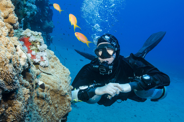 Diver with beautiful underwater world Stock Photo 11