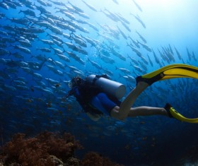 Diver with beautiful underwater world Stock Photo 12