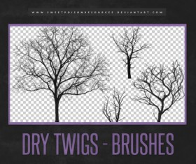 Dry Twigs Photoshop Brushes