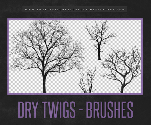 Dry Twigs Photoshop Brushes