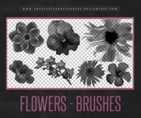 Flowers Photoshop Brushes