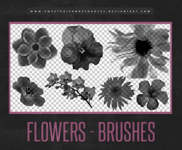 Flowers Photoshop Brushes