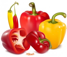 Fresh pepper illustration vector 01