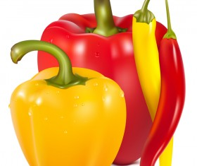 Fresh pepper illustration vector 02
