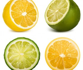 Green with orange citrus vector