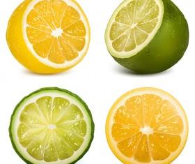 Green with orange citrus vector