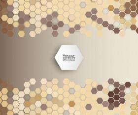 Hexagon modern background vector
