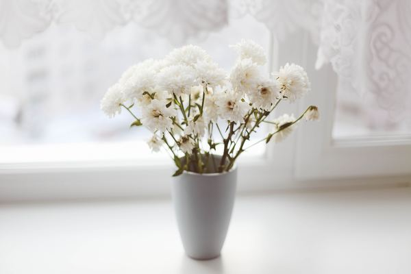 Home white vase flower arrangement Stock Photo