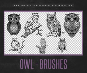 Owl Photoshop Brushes