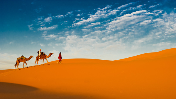 People in the desert experience camel travel Stock Photo 01