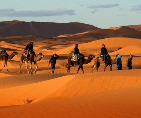 People in the desert experience camel travel Stock Photo 02