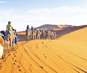 People in the desert experience camel travel Stock Photo 03