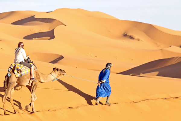 People in the desert experience camel travel Stock Photo 04