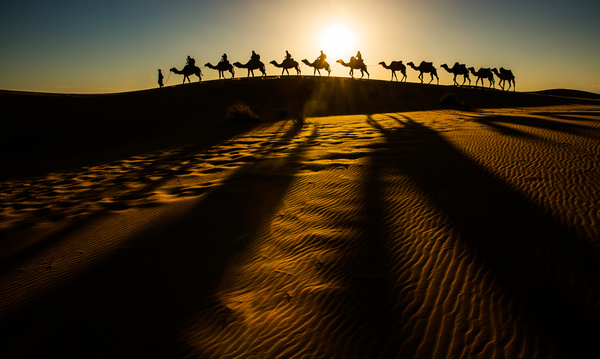 People in the desert experience camel travel Stock Photo 06