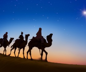 People in the desert experience camel travel Stock Photo 08