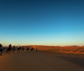 People in the desert experience camel travel Stock Photo 10