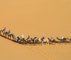 People in the desert experience camel travel Stock Photo 11
