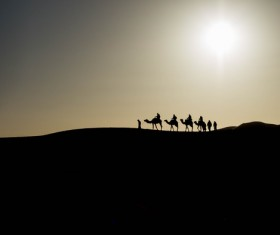 People in the desert experience camel travel Stock Photo 12