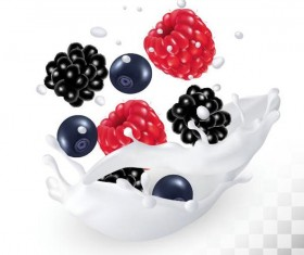 Raspberry and blueberry with blackberry with splash milk vector
