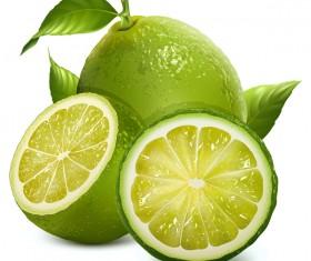 Realistic green citrus illustration vector 02