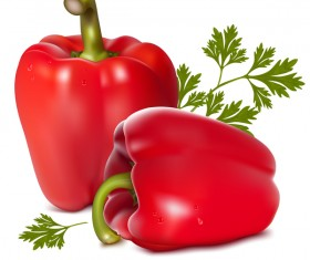 Red pepper vectors