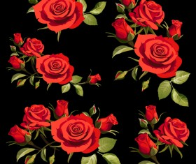 Red rose with black background vectors