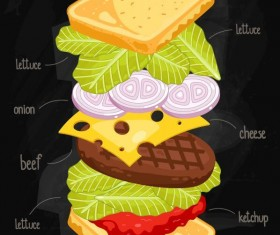 Sandwich ingredients infographic vector 05
