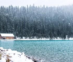 Snowy day landscape Stock Photo