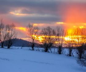 Twilight sun and snow landscape Stock Photo