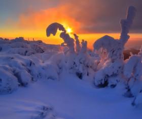 Twilight sunshine and silver white world Stock Photo 01