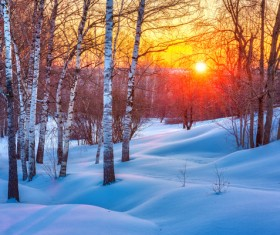 Twilight sunshine and silver white world Stock Photo 02