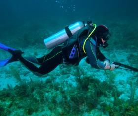Underwater hunting Stock Photo
