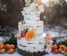 Wedding cake Stock Photo 02