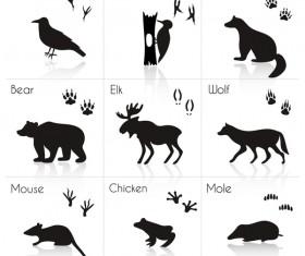 Wild animal with animals footprint vectors 02