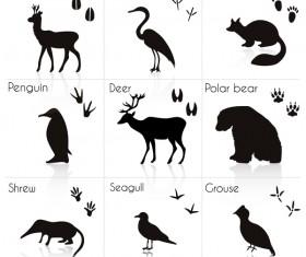 Wild animal with animals footprint vectors 03