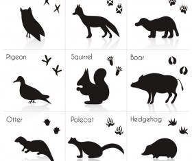 Wild animal with animals footprint vectors 04