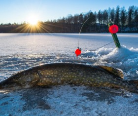 Winter fishing Stock Photo 02
