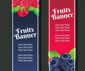 berry vertical banner vector