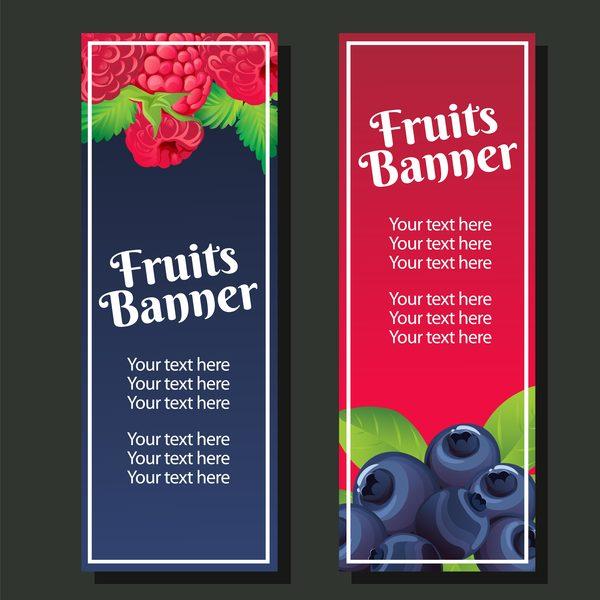 berry vertical banner vector