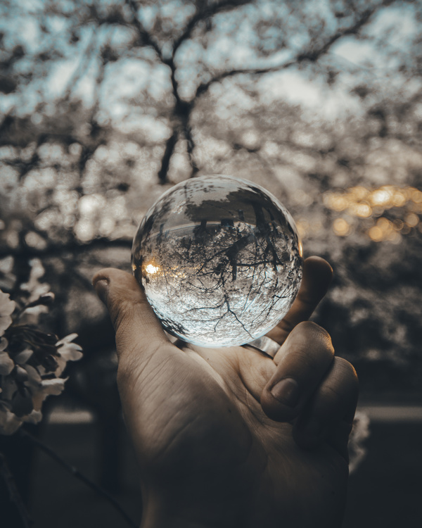 hand holding transparent glass sphere Stock Photo