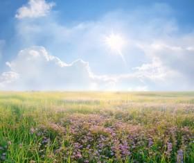 most beautiful scenery of nature Stock Photo 03