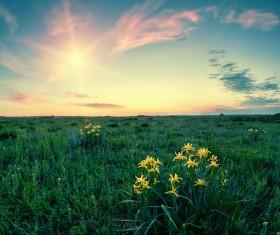 most beautiful scenery of nature Stock Photo 04