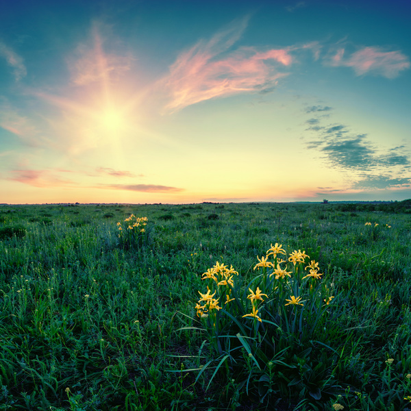 Beautiful Nature Video Download: Most Beautiful Scenery Of Nature Stock Photo 04 Free Download