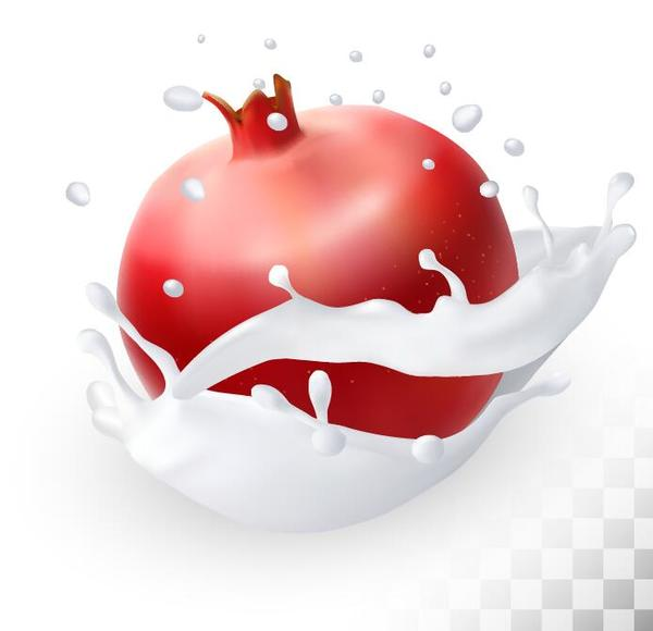 pomegranate with splash milk vector