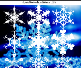 6 Kind Snowflake Photoshop Brushes