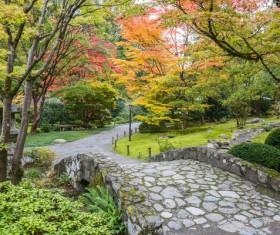 Beautiful Japanese garden Stock Photo 02
